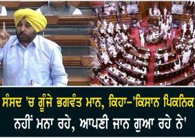 bhagwant mann says