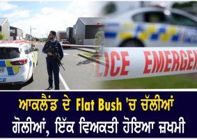 shots fired in aucklands flat bush