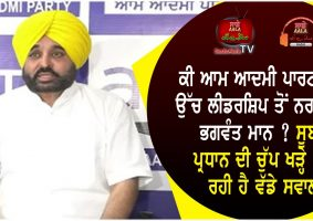 bhagwant maan angry with aap