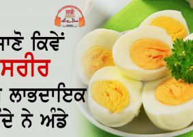 egg is beneficial for health